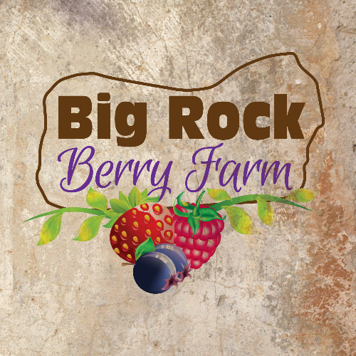 Big Rock Berry Farm Logo